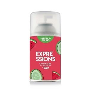 Rep Express Aromat Autom - Sandia/pepino